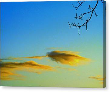 Cloud Heron Canvas Print