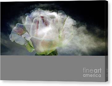 Canvas Print featuring the photograph Cloud Rose by Clayton Bruster