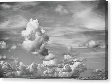 Cloud Study Canvas Print by Tom Druin