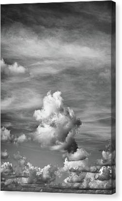 Cloud Study ...vertical Canvas Print by Tom Druin