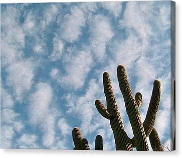 Cloud Watchers 2 Canvas Print