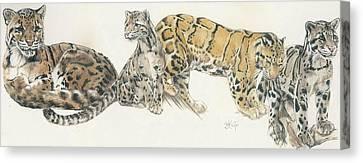 Feline Canvas Print - Clouded Leopard by Barbara Keith