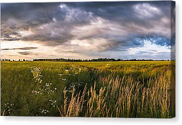 Canvas Print featuring the photograph Clouds Over The Fields by Dmytro Korol