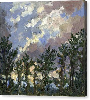 Clouds Over The Pines Tanglewood Canvas Print by Thor Wickstrom