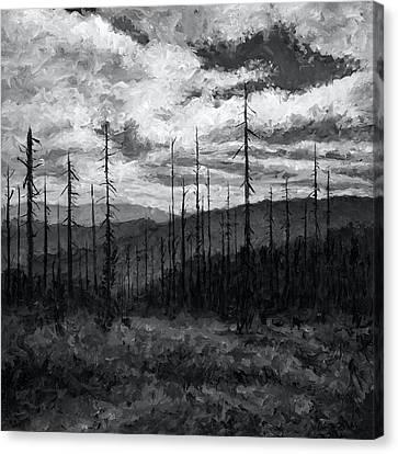 Cloudscape 3 Canvas Print
