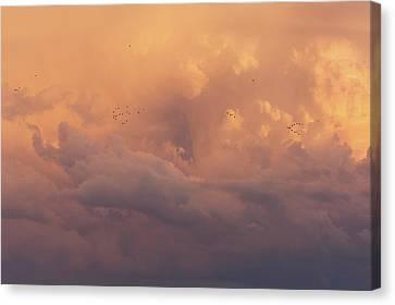 Canvas Print featuring the photograph Cloudscape by Dustin LeFevre