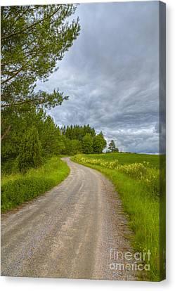 Cloudy Day Canvas Print by Veikko Suikkanen