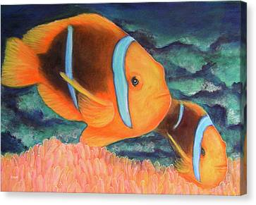 Clown Fish #310 Canvas Print by Donald k Hall