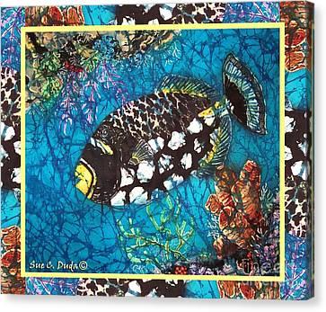 Clown Triggerfish-bordered Canvas Print by Sue Duda