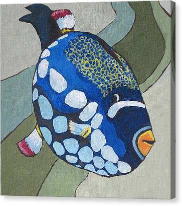 Clown Triggerfish Canvas Print by Sandy Tracey