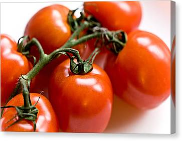 Cluster Of Tomatoes Canvas Print
