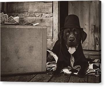 Clyde Canvas Print by Heather Applegate