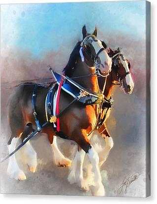 Tom Schmidt Canvas Print - Clydesdales by Tom Schmidt