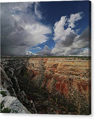 CM1 Canvas Print by Jerry LoFaro