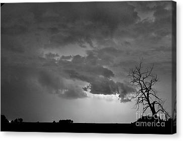Co Cloud To Cloud Lightning Thunderstorm 27 Bw Canvas Print by James BO  Insogna
