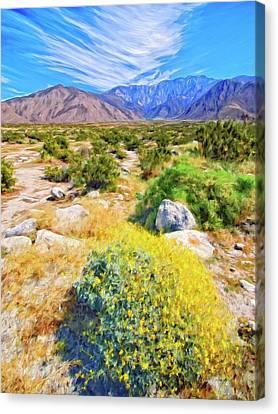 Coachella Spring Canvas Print