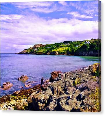 Rocky Coast At Howth Canvas Print