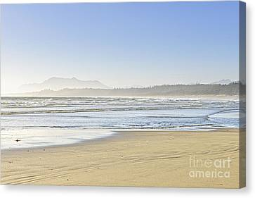Vancouver Island Canvas Print - Coast Of Pacific Ocean On Vancouver Island by Elena Elisseeva