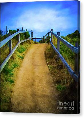 Canvas Print featuring the photograph Coast Path by Perry Webster