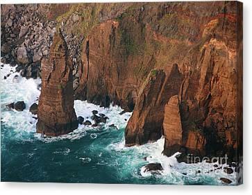 Coastal Detail Canvas Print by Gaspar Avila