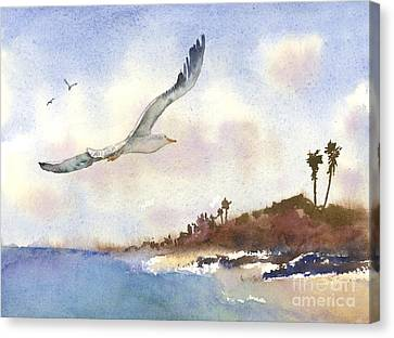 Coastal Flight Canvas Print by Amy Kirkpatrick