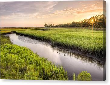 Coastal Florida Landscape - Late Afternoon On The Marsh  Canvas Print by Bill Swindaman