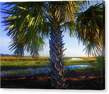 Coastal High Tide  Canvas Print