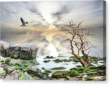 Canvas Print featuring the photograph Coastal Landscape  by Angel Jesus De la Fuente