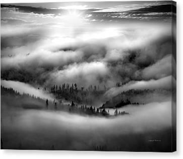 Sunflare Canvas Print - Coastal Range Bw by Leland D Howard