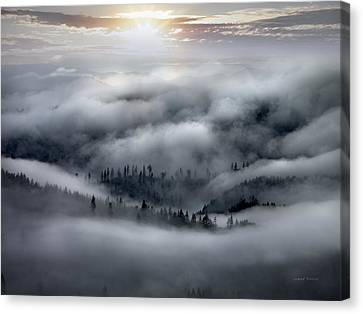 Sunflare Canvas Print - Coastal Range Ocean Fog by Leland D Howard