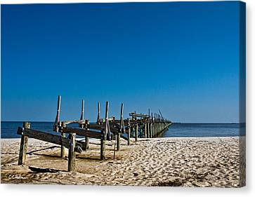 Coastal Remains Canvas Print by Christopher Holmes
