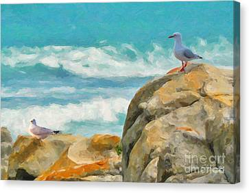 Coastal Rocks Canvas Print by Chris Armytage