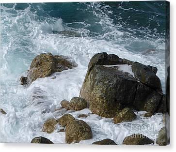 Coastal Rocks Trap Water Canvas Print