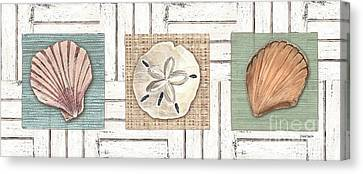 Coastal Shells 1 Canvas Print by Debbie DeWitt