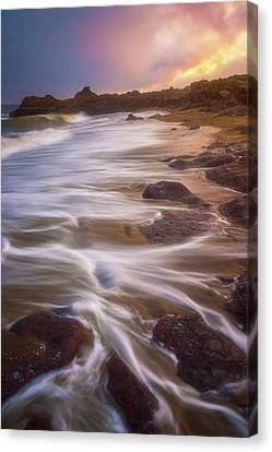 Canvas Print featuring the photograph Coastal Whispers by Darren White