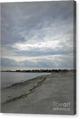 Canvas Print featuring the photograph Coastal Winter by Kristine Nora