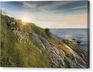 Cliff Lee Canvas Print - Coastline Newport by Robin-Lee Vieira