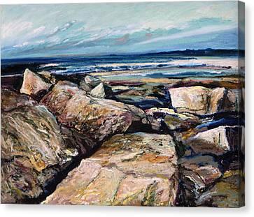 Coast's Edge Canvas Print by Richard Knox
