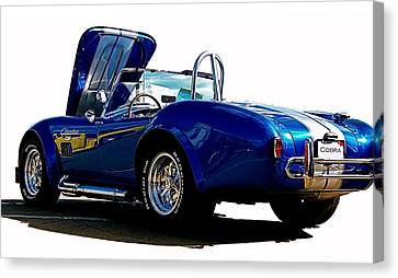 Cobra 427 Canvas Print by Sue Stefanowicz
