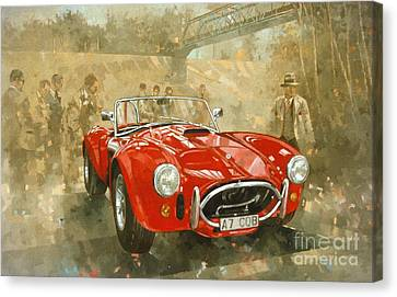 Vintage Car Canvas Print - Cobra At Brooklands by Peter Miller