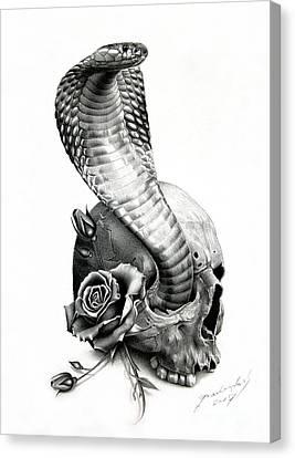 Cobra Canvas Print by Miro Gradinscak