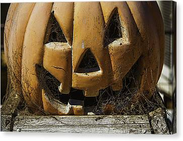 Cobweb Pumpkin Canvas Print by Garry Gay