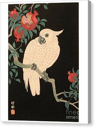 Cockatoo And Pomegranate Canvas Print