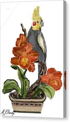 Cockatoo Canvas Print by June Pressly