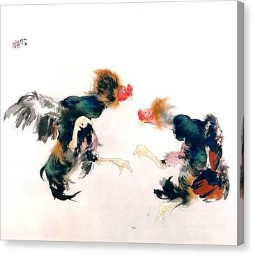 Cocks Fighting Canvas Print