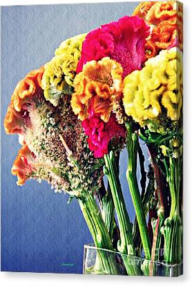 Canvas Print featuring the photograph Cockscomb Bouquet 2 by Sarah Loft