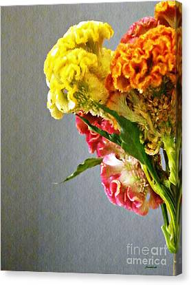 Canvas Print featuring the photograph Cockscomb Bouquet 4 by Sarah Loft
