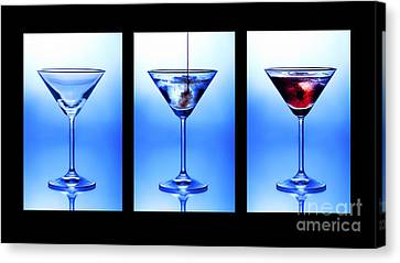 Cocktail Triptych Canvas Print by Jane Rix