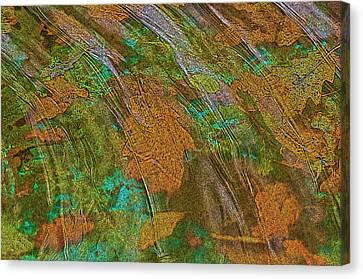 Cocoa's Pool Canvas Print
