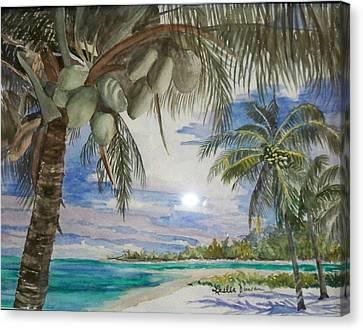 Coconut Beach Canvas Print by Leslie Duncan
